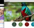 Diseño de Pagina Web en Guadalupe