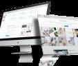 Diseño de Pagina Web en Huaral