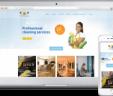Diseño de Pagina Web en Pedregal